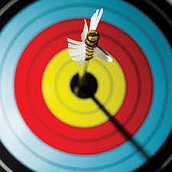 bullseye-w-arrow_420x420